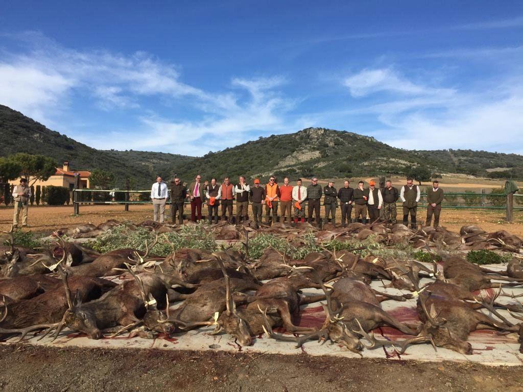 غضب في البرتغال بعد ذبح أكثر من 500 غزال وخنزير بري على يد صيادين إسبان قاموا بصف الجثث لالتقاط صور تظهر فخرهم بهذا الصيد Natural Landmarks Outdoor Landmarks