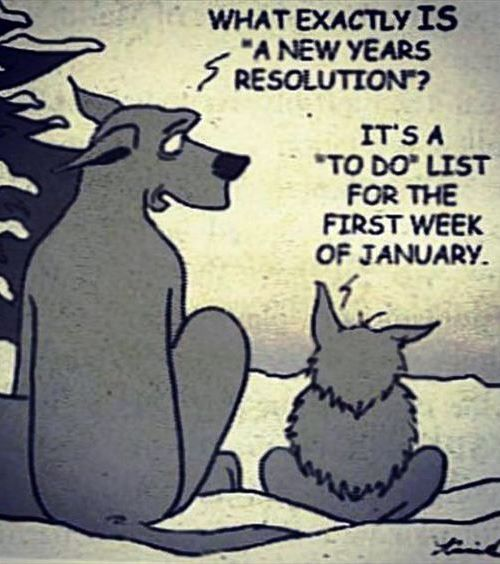 Funny New Year Resolutions Hilarious 2019 For Friends And Family New Year Quotes Funny Hilarious Funny New Years Memes Happy New Year Quotes Funny