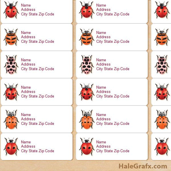 FREE Printable ladbybug Species Address Labels Ladybugs