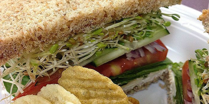 Berkeley Vegan Sandwich At Chucks Natural Food Market Tampa Vegan