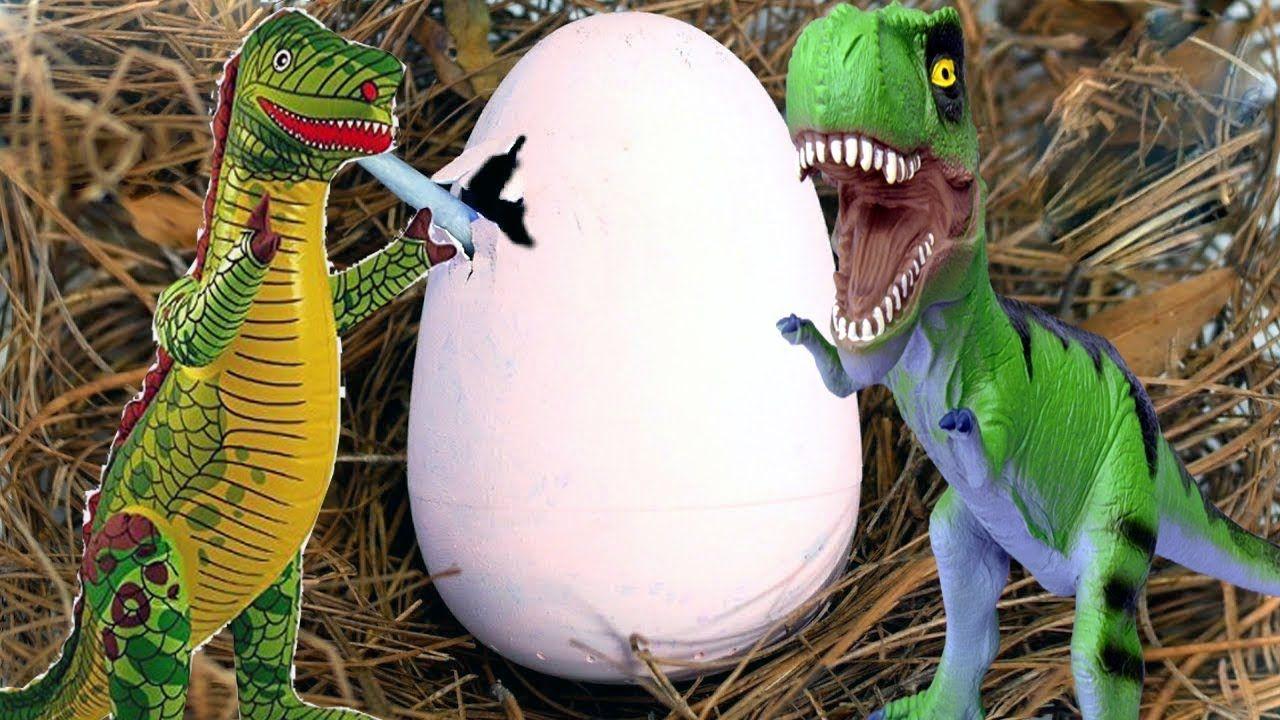 Dinosaur egg hatches jurassic world baby dinosaur in
