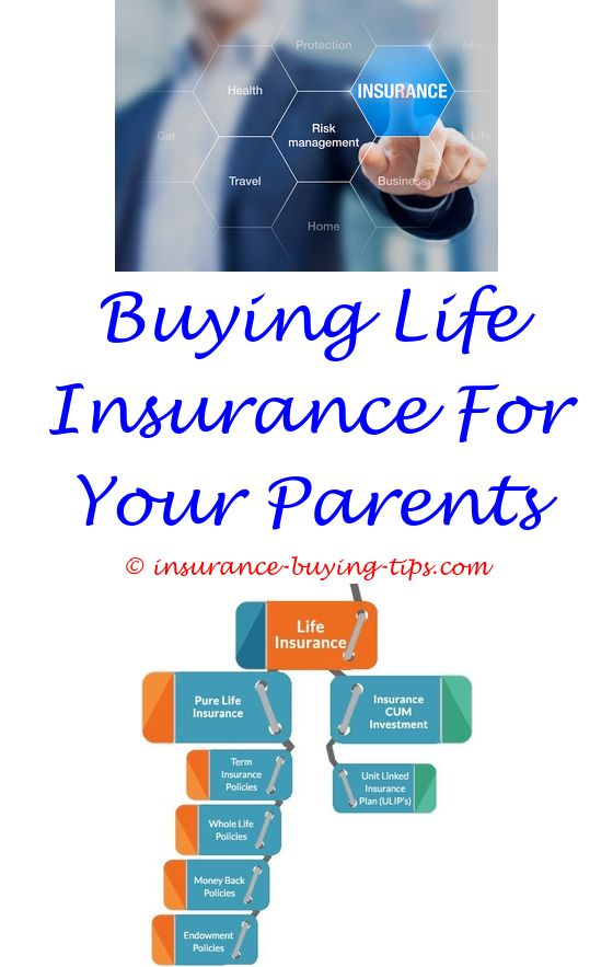 Auto Ins Quotes Online | Dental insurance, Permanent life insurance ...