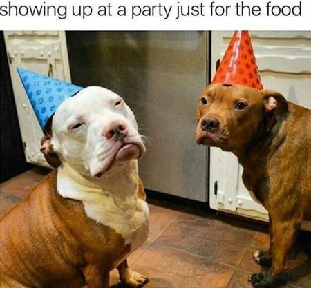 Funny Images of The Day - 38 Images