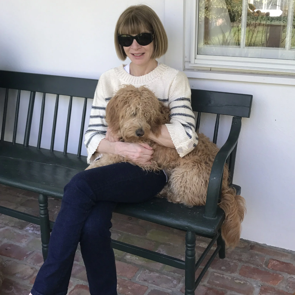 Anna Wintour on How the Fashion Community Is Mobilizing Against the Pandemic | Vogue