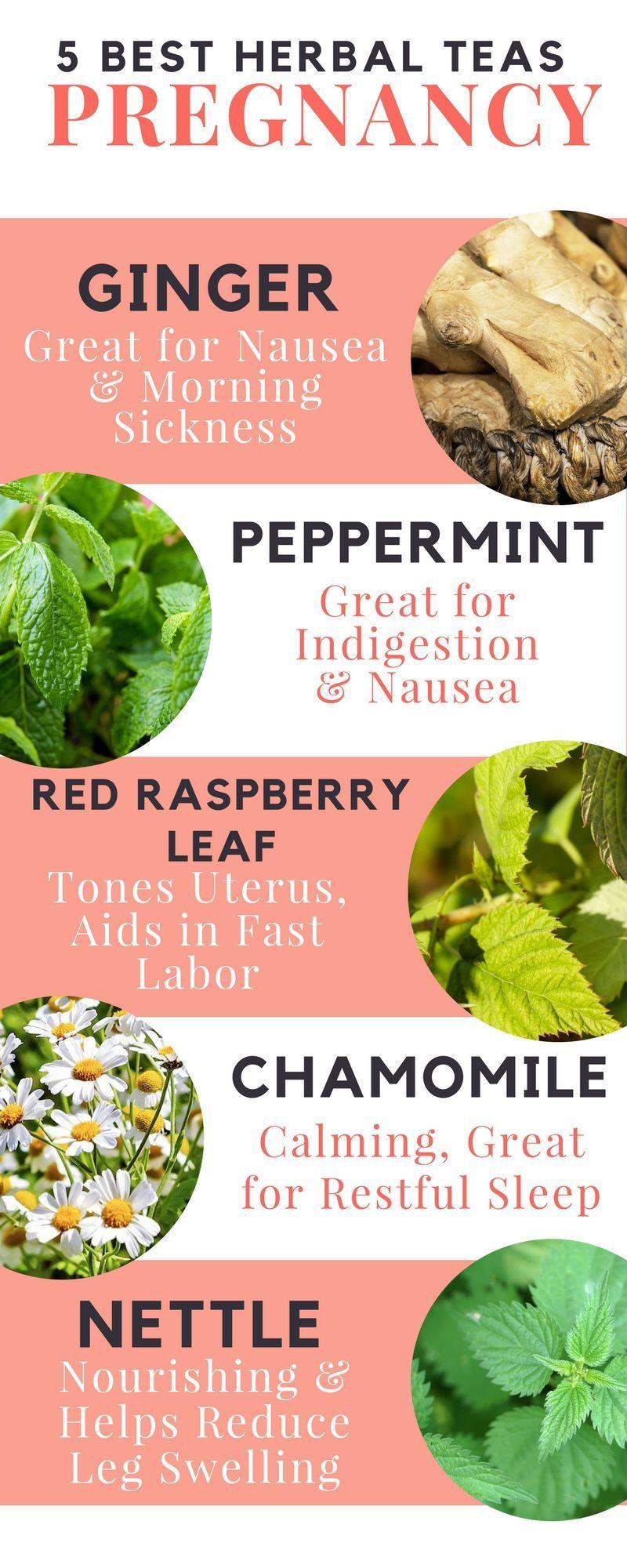 5 of the best herbal teas for pregnancy   ::: pregnancy