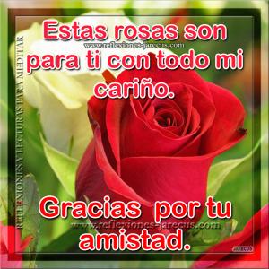 Imágenes Con Frases De Una Rosa Para Ti Saludos Y Buenos