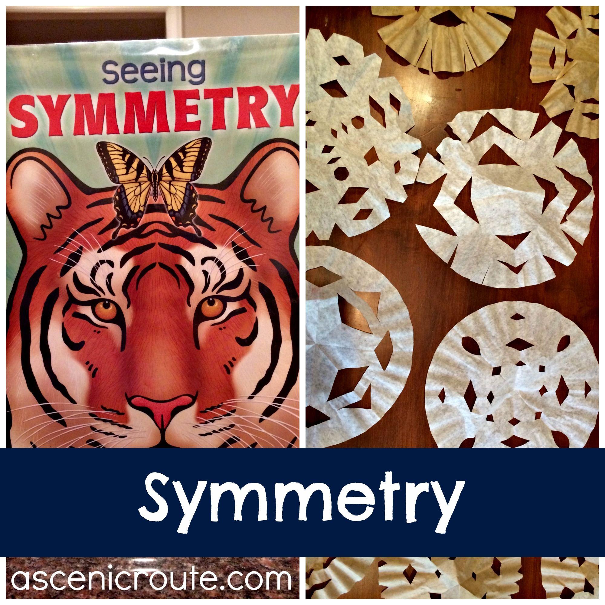 mini unit symmetry