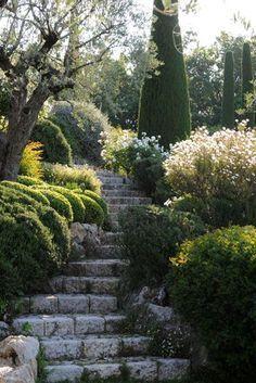Photo of Disegni del giardino ispirato al Mediterraneo
