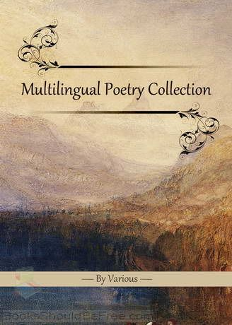 the representation of marginalised voices in poetry english literature essay The problematic nature of representation itself, its subjectivity and unreliability, is a central concern of duffy's poetry much of her work is written in the form of dramatic monologue which serves to demonstrate the fundamental inadequacy of language to re-present by undermining the readers' expectations of traditional discourses.