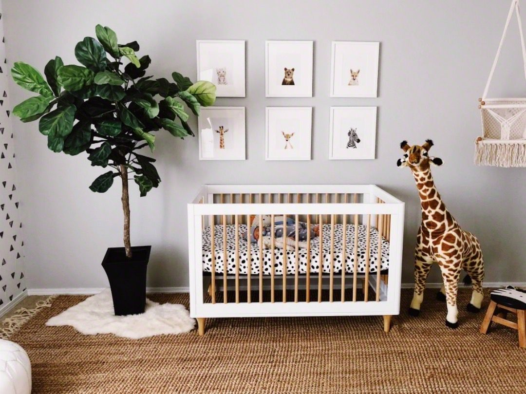In The Nursery With Sparrows And Lily Project Nursery Baby Boy Room Nursery Nursery Room Boy Modern Baby Room