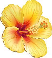 Resultado De Imagem Para Molde Flor Moana Clipart De Flores Desenho De Hibisco Clips De Flores
