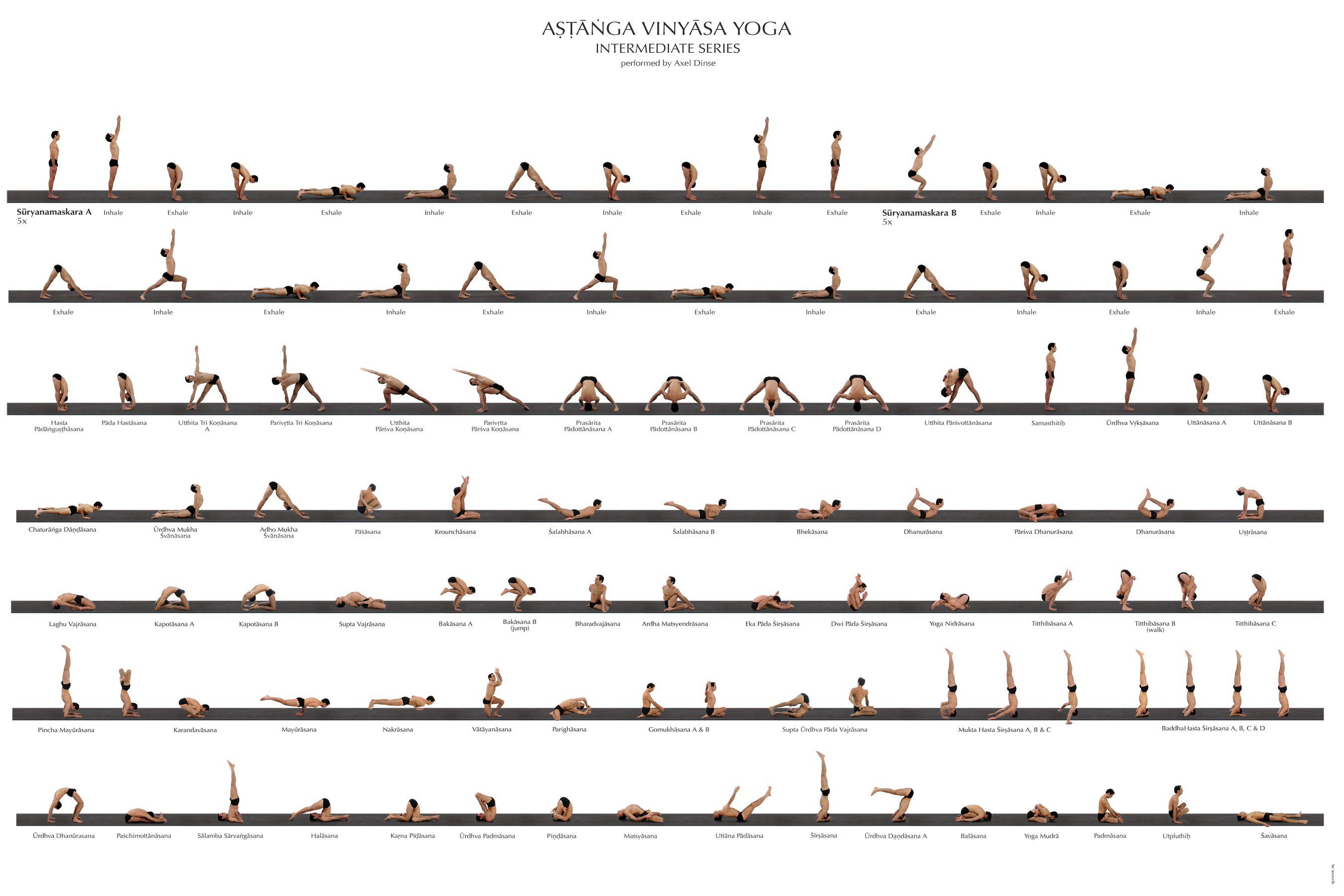 Ashtanga Yoga Poster | Ashtanga vinyasa yoga, Ashtanga ...