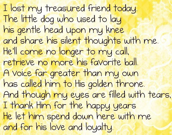 In Memory Of Samson. Rest In Peace My Love. 1-18-2013, My