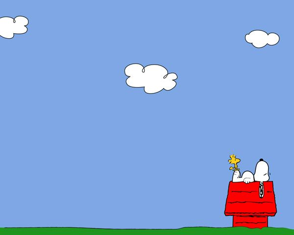 In Case You Were Worried Snoopy Is Officially A Dog Snoopy Wallpaper Snoopy Pictures Snoopy And Woodstock