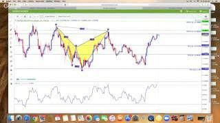 How To Trade Forex For Beginners With Imarkets Live Harmonic