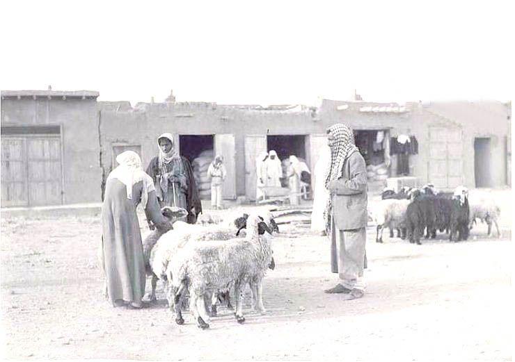 سوق في طريف صور من التاريخ صحيفة البلاد السعودية Ghost Chair Decor Home Decor