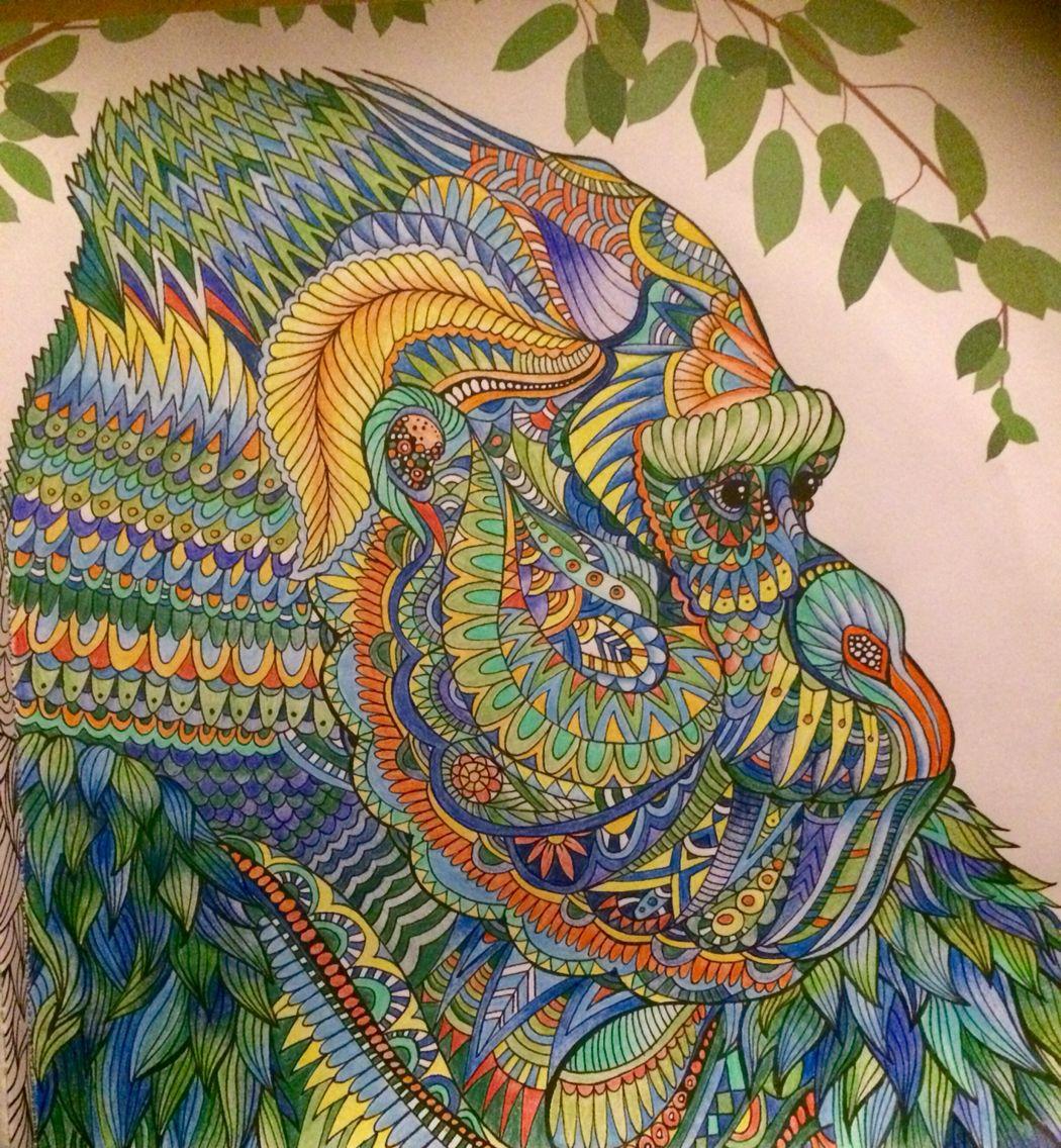 Gorilla Jungle Colours Animal Coloring Books Basford Coloring Book Zentangle Art