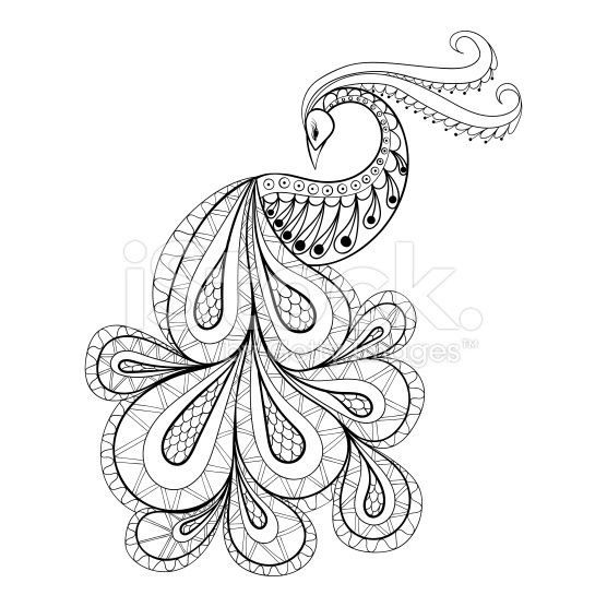 Hand Drawn Peacock For Antistress Coloring Page With High Details