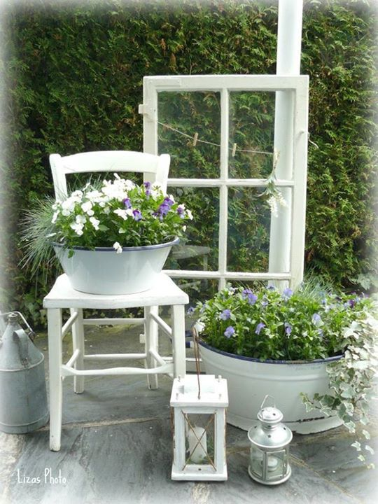 fr hlingsblumen auf meiner terrasse spring pinterest. Black Bedroom Furniture Sets. Home Design Ideas