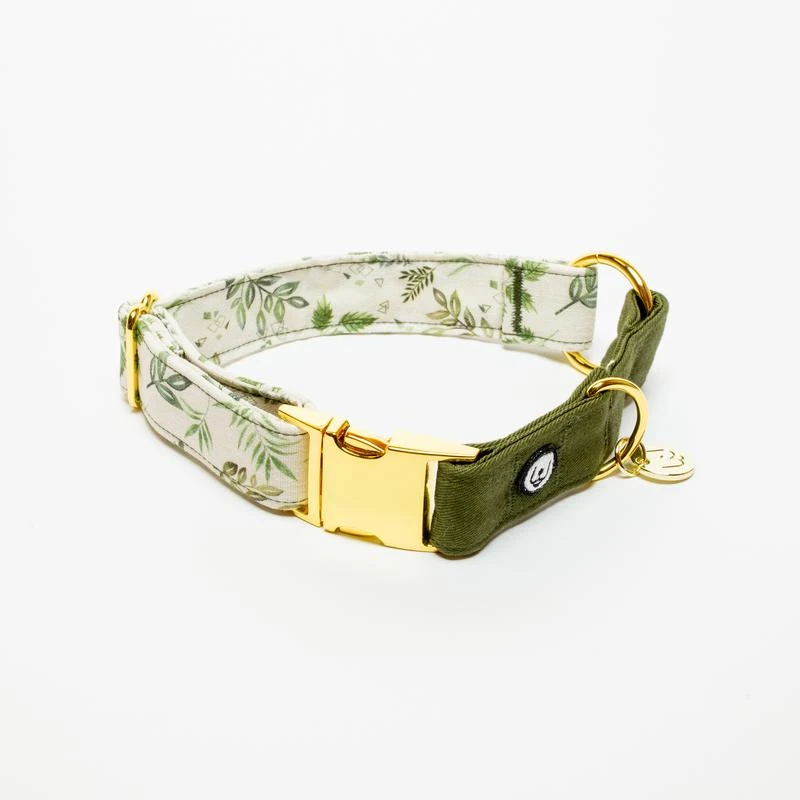 Fern Collar In 2020 Unique Dog Collars Small Dog Collar Leather Dog Leash