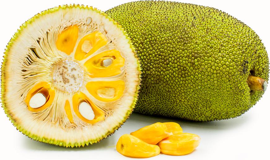 Jack Fruit Information And Facts Jackfruit Breadfruit Jackfruit Health Benefits