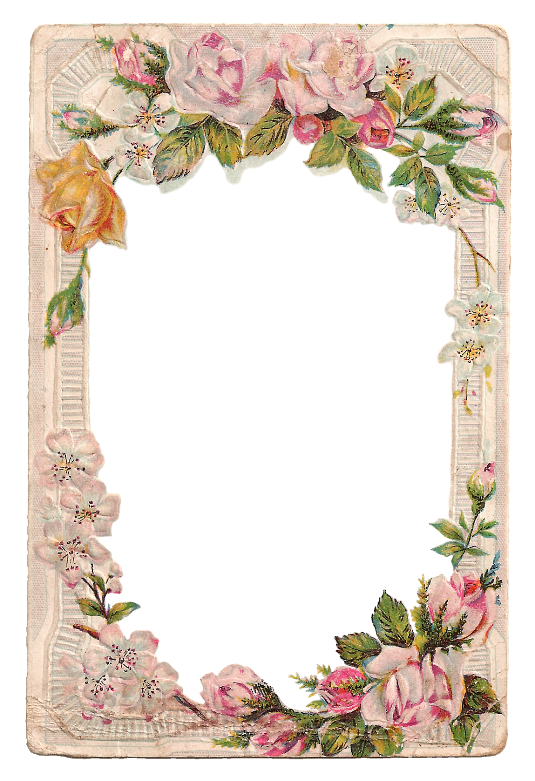 Free Digital Flower Frame with Roses, Dogwood, Cats and