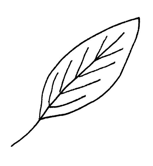 7 Ways To Draw Fall Leaves Leaf Drawing