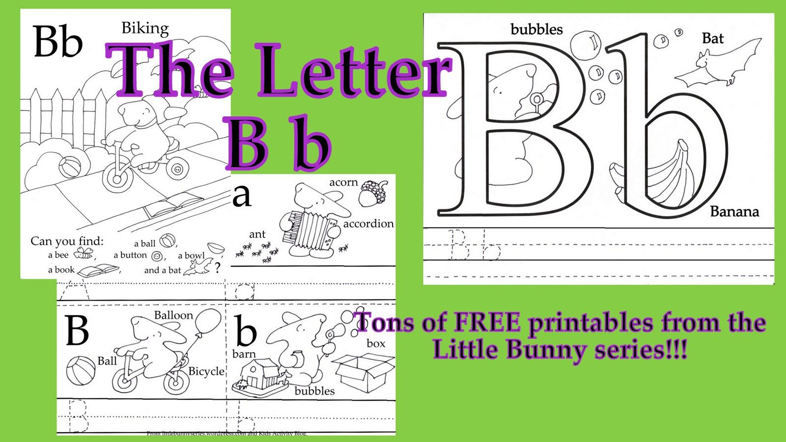 The Letter Of The Week Bb Go To The Little Bunny Series