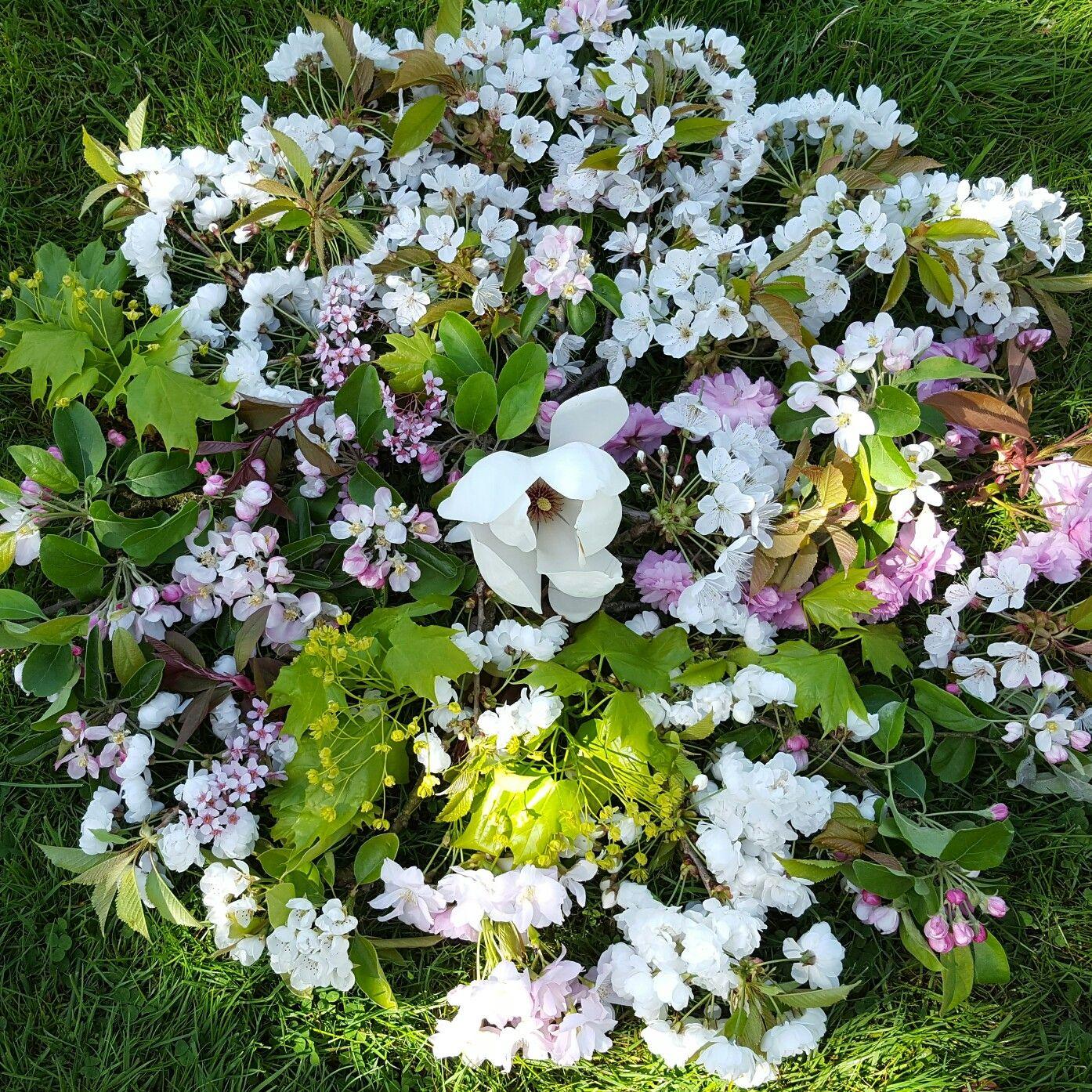 My blossom flower medicine wheel, celebrating the blossom season here at Orchard Oast.
