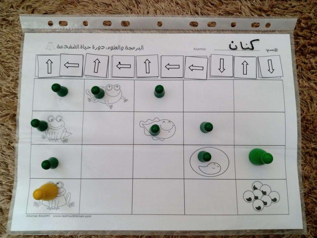 البرمجة للأطفال دورة حياة الضفدعة Holiday Decor Calendar Decor