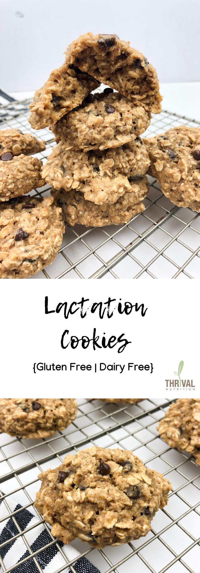 Lactation Cookies Gluten Free Dairy Free Recipe Lactation Cookies Gluten Free Cookies Healthy Lactation Cookies