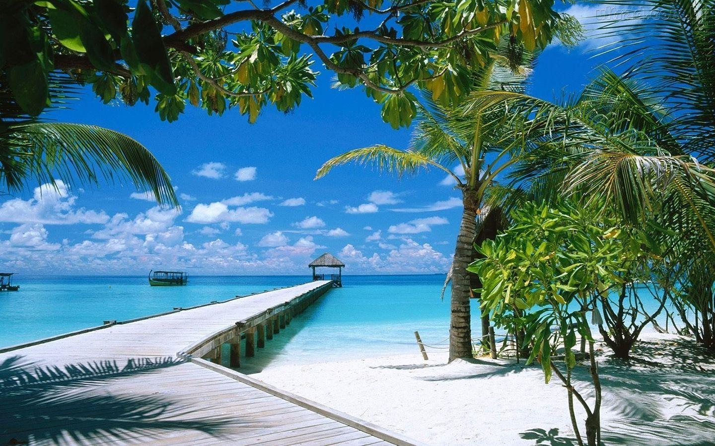 Conhecido Uma Paizagem linda de uma Praia | Imagens lindas | Pinterest  NT11