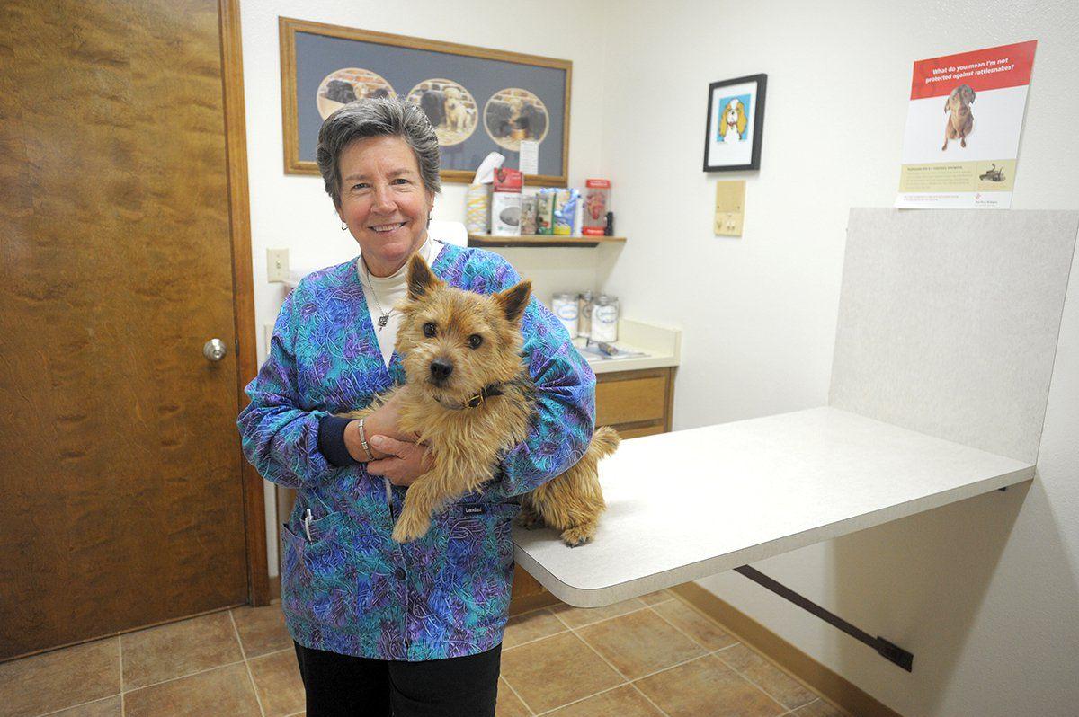 Sierra Animal Hospital is a quaint veterinary practice