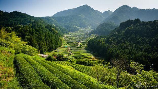 'Ilhas encantadas': Um passeio fotográfico por 12 maravilhas naturais do Japão http://bbc.in/1S4NJnW