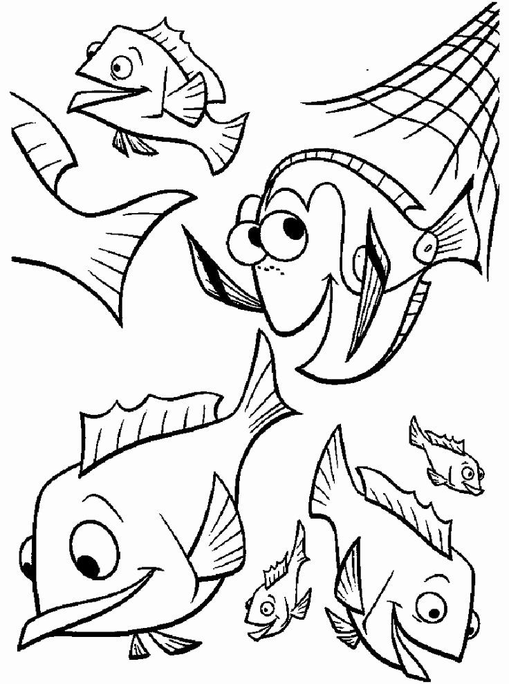 28 Finding Nemo Coloring Page in 2020 Nemo coloring