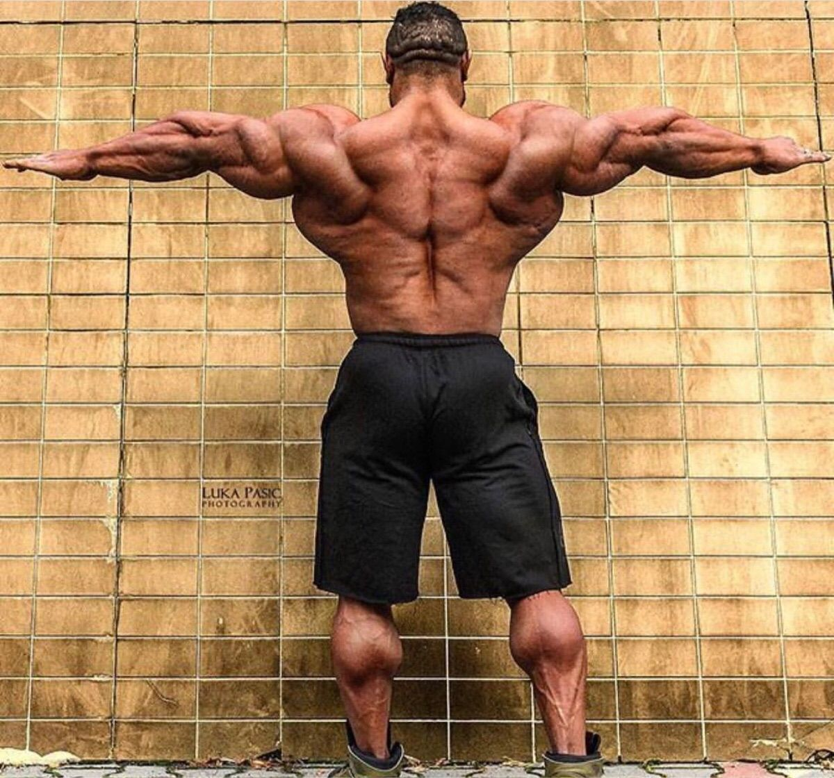 Roelly's rear delt development this year is ridiculous
