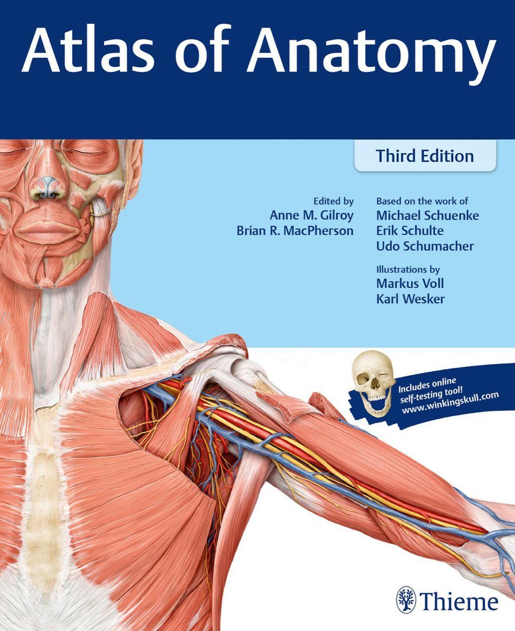 Gross Anatomy Ebook