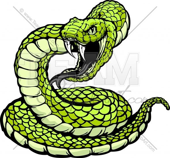 Striking Viper or Coiled Snake | Clipart Panda - Free Clipart Images