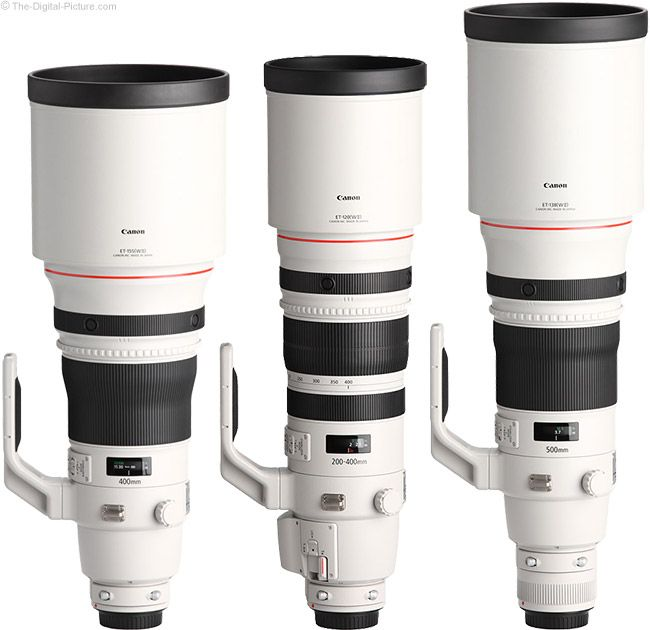 Canon 200-400mm Lens Comparison with Hoods