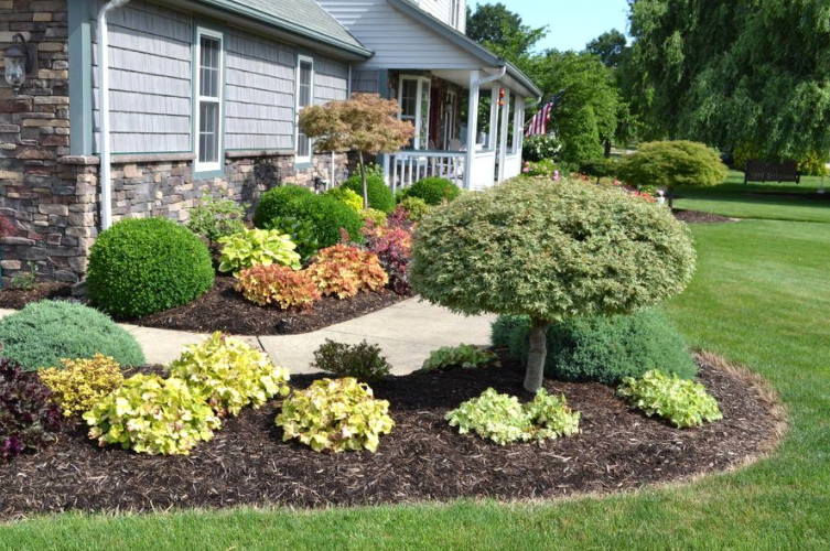How To Landscape Your Front Yard Yourself Yard Landscaping Small Backyard Landscaping Small Gardens