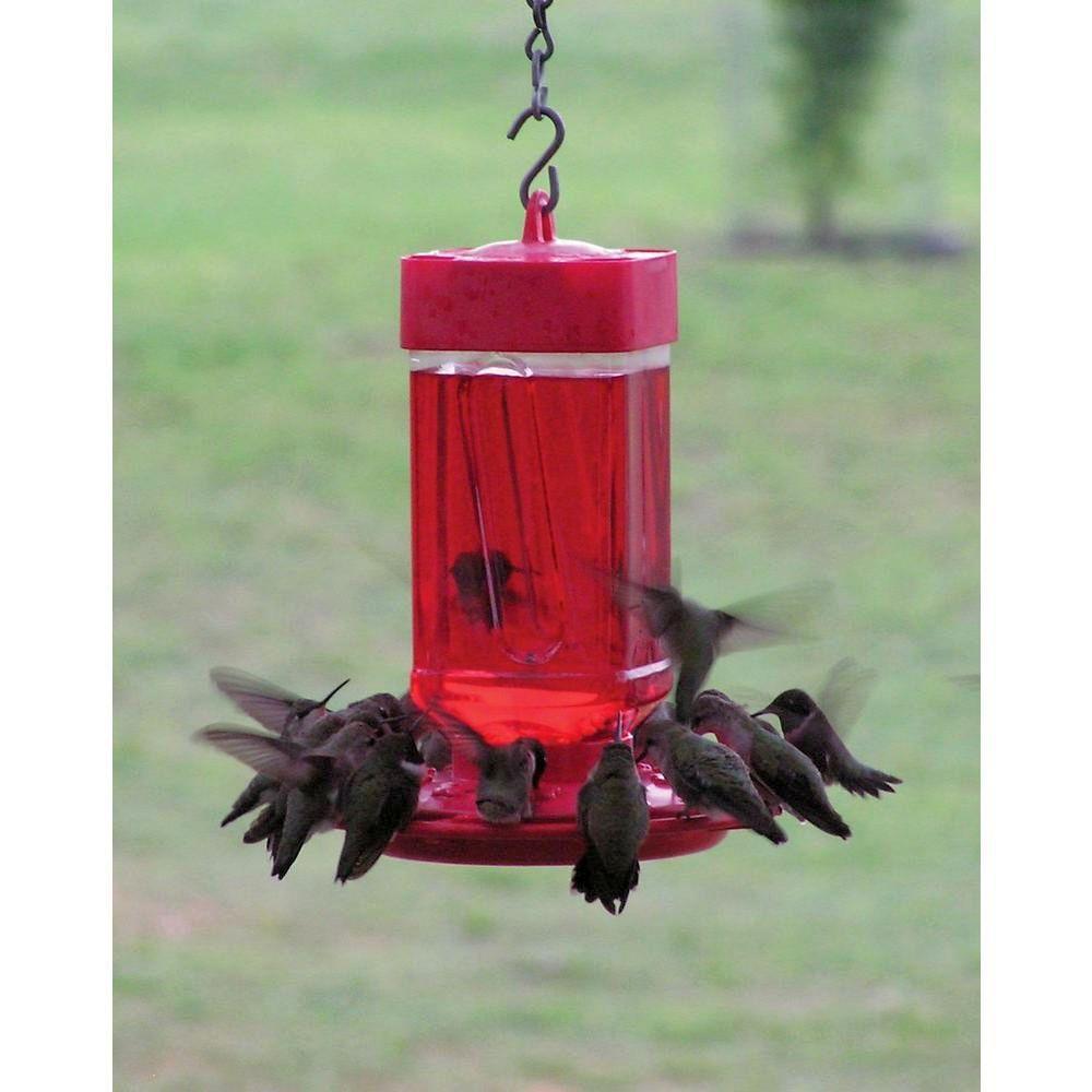 Hummingbird Feeders Blown Glass, Bottle, Ceramic, Dish