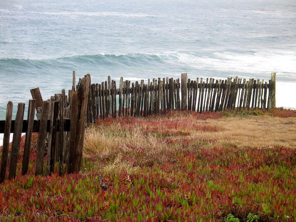Wooden Fence At Sea Ranch Mendocino Coast Coastal Gardens Fencing