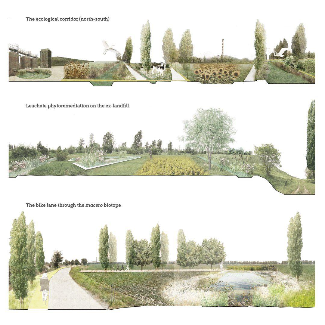 Landscape Architecture Section Watercolor Google Search Landscape Architecture Section Landscape Architecture Park Architectural Section
