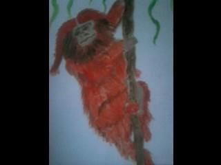 My first Acrylic painting of a 'Lionhead Monkey' I think ??