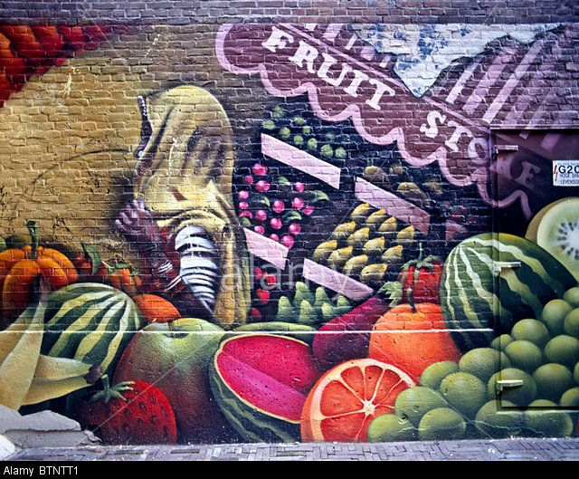 Image from http://c8.alamy.com/comp/BTNTT1/graffiti-on-a-brick-wall-of-fruits-vegetables-and-a-dark-skinned-woman-BTNTT1.jpg.