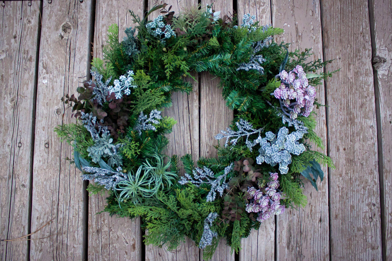 Mixed Succulent Winter Wreath #BushyWreath #WinterWreath #PineWreath #GreenWreath #OvergrownWreath #BlueWreath #SucculentWreath #Wreath #LargeWreath #ChristmasWreath