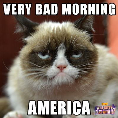 Guess Who S Going To Be On Good Morning America Tomorrow March 22 2012 Funny Grumpy Cat Memes Grumpy Cat Humor Grumpy Cat