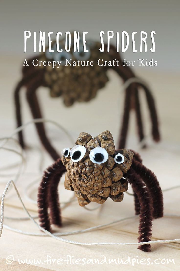 How to Make Pine Cone Spiders Nature crafts, Pine cone and Fireflies - Halloween Decorations For Kids