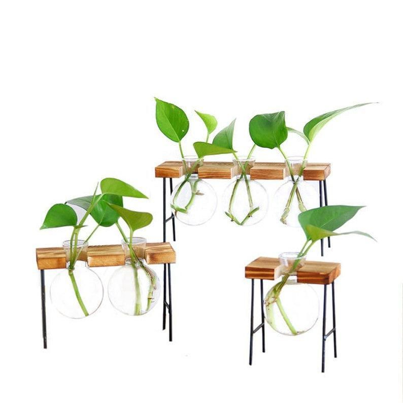 Hydroponic Office Planter On Metal Plant Stand Glass Planter
