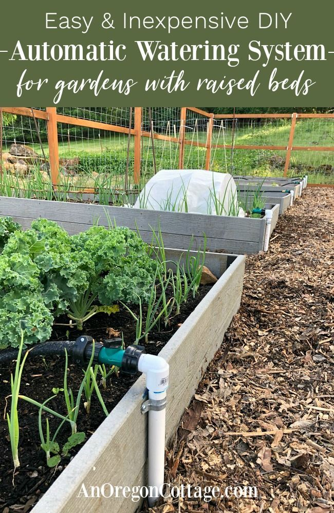 DIY Garden Watering System  Easy  Inexpensive  Printable Supplies List  An Oregon Cottage